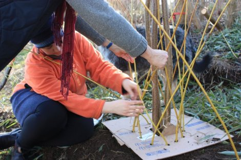 weaving bases of  living willow columns